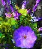 unknown flower copy.jpg