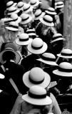 Sea of hats