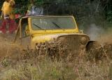 Jeep (II)