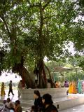The place where our lord did Geethopadesam at Kurukshetra  where akanda Geetha parayanam goes on