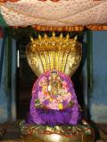 Yadugiri Nachiyar - Parthiba Navarathri uthsavam