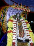 Paarthiva - Manavala Mamunikal in Seshavahanam KudaikuL kudai