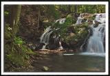 Falls Along Riga Creek