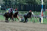 Saratoga Races September 2005