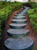Stairs - Berkeley Hills