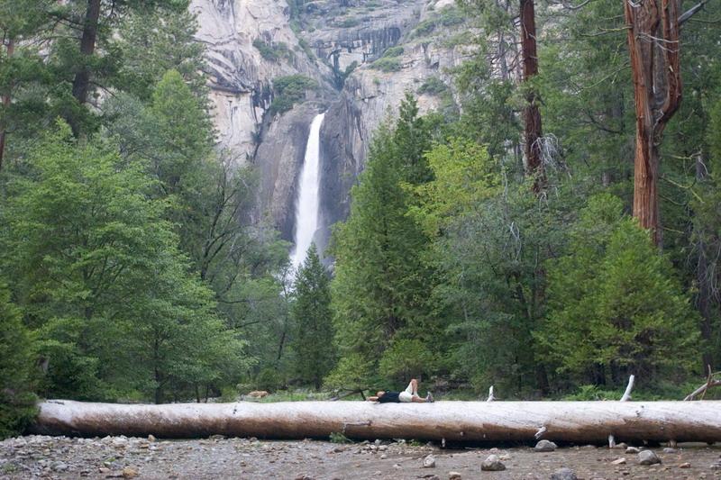 Lower Yosemite Fall IMG_7562