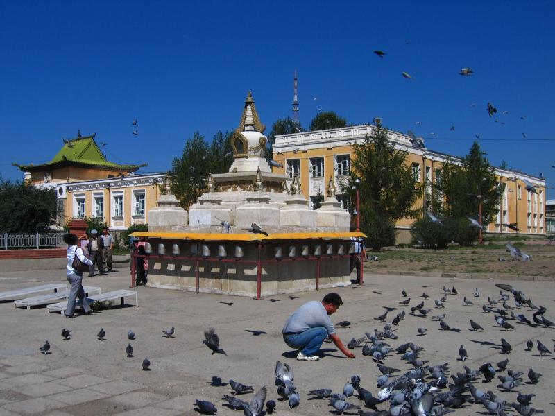 Facing the Buddhist University of Mongolia