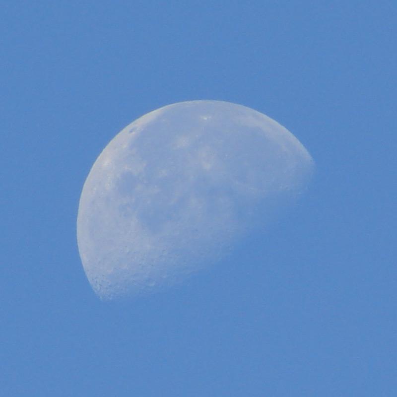 Lua /|\ Moon