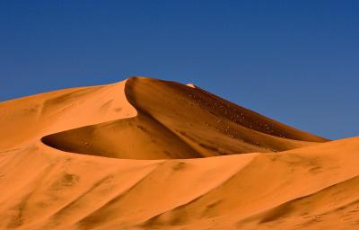 Red Dune - Detail
