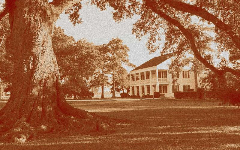 Mulberry Grove Plantation - 1836